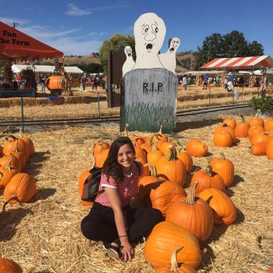 pumpkin Patch (4)